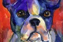 Boston terriers are the best / by CASEY ROEBUCK
