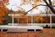 Bauhaus - Van der Rohe