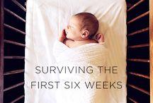 Newborn in the house / Newborn, new baby, post partum, new mom