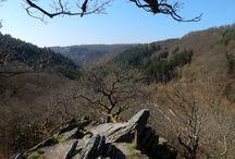 Wandern im Naturpark Rhein-Taunus in Hessen