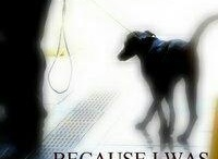 Animal Rescue / by Helene Kafka