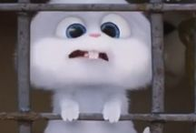 Bunny snowball