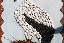 madarak termésből