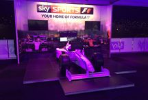 Formula 1 Simulator / F1 simulator :- For a realistic racing simulator drive PSW's fleet of F1 Simulators, produced under licence from original Formula 1 cars, use high grade force feedback controls and replica Carbon Fibre steering wheels.