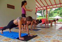 Health and Wellness Tours