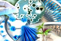 SAJ Biotechnology (SAJB) / Scholarena Journal of Biotechnology (SAJB) is a multidisciplinary peer reviewed journal which covers different aspects in the study of biotechnology and applications. Its research is focused on academic, medical and industrial applications.