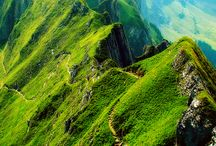 Vividly Verdant / Images that dazzle me with reminders that the ground is bursting forth with life / by Matthew