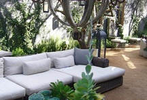 Patio, plants and backyard / by Melissa Ann