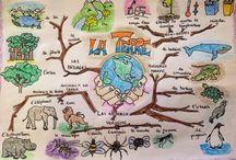 Fransızca zihin haritası