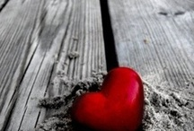 Love / public