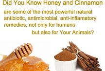 HONEY benefits and uses / This board has information about honey, its benefits, its uses and great information about associated topics, such as bees, beeswax, pollen, and beekeeping in general. Visit http://www.mahakobees.com/blog for load of information and many family friendly and informative videos.