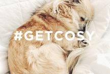 G E T  C O S Y / Get ready for Autumn in style, look out for our new campaign #GETCOSY there might even be a chance to #WIN a cosy prize bundle...