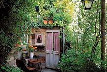 Cottage e little garden