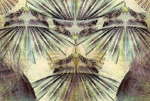 INSPIRATION - Texture/Patterns