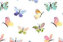 motýle,zvieracie packy,lebky