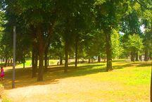 Tasmajdan Park in Belgrade, Serbia / Tašmajdan is a public park and the surrounding urban neighborhood of Belgrade, the capital of Serbia.