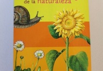 Bilingual Kids Books We Love / Books in English and Spanglish (and Spanglish) that we are digging. / by Dos Borreguitas | Spanglish Style for Kids