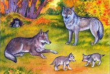 zvieracie rodinky