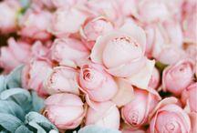 Floral Pop Up Shop