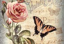Flowers, butterflies etc etc