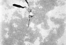 Spearo pics / by Emilio Fracchia