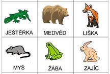 lesne zvieratá
