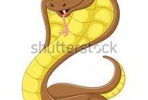 inside snake
