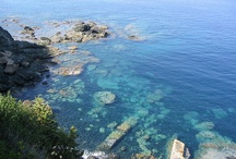 Tuscan Sea / Entertainment, nature and lots of blue