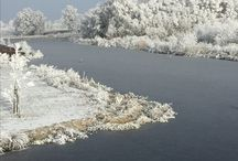 Winter # natuur # sneeuw # rijp #