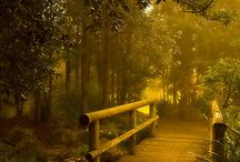 Nature & places