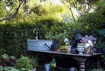 Gardening / by Yvette Dorsett