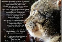 Tiere!!!