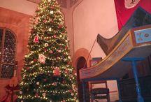 "Visite Guidate Specilai ""Castello d'Inverno - Magie del Natale Incantato"""