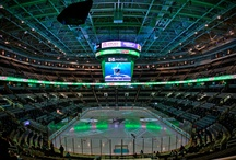 Sports Central / by Visit San Jose California