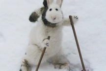 BUNNIES, RABBITS,AND COTTONTAILS /      Cute, huggable, and adorable bunnies real and unreal.      / by Susan Hutchings