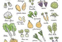 fruits légumes mois par mois