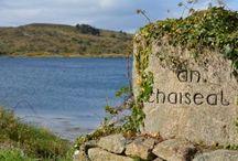 Irlande et Dame Nature / Profitez d'un voyage au cœur de la sublime nature irlandaise, entre les paysages lunaires du Burren, les contrastes époustouflants du Connemara, les côtes d'Antrim et la fameuse chaussée des géants, les paysages verdoyants et archéologiques de Sligo et le somptueux Donegal...