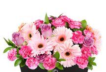 Flores en Canasta