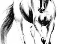 Transzfer ló