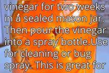 pest remedies