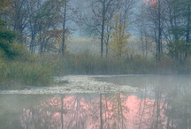 Landscapes / public / by Margaret Ackroyd