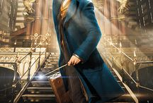 Fantastic Beasts and Where to Find Them.....