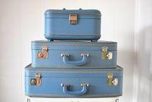 suitcase/trunk repurposed