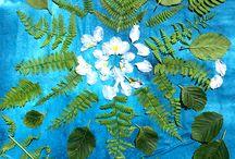 식물과 ㅇㅖ술pflanzen und kunst dinge