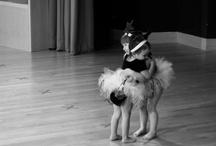 Ballet <3 / by Sofia Kehyaian