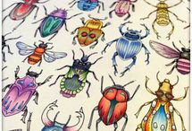 hyönteinen