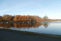 My Wanderland in Sweden