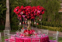 Engagement -Wedding  ideas / by Alexis Gibson