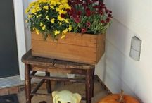 Fall decoration / Craft
