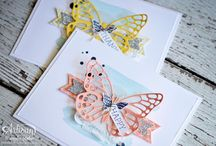 Butterfly Basics bundle